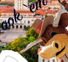 University of Texas - Austin  Sticker