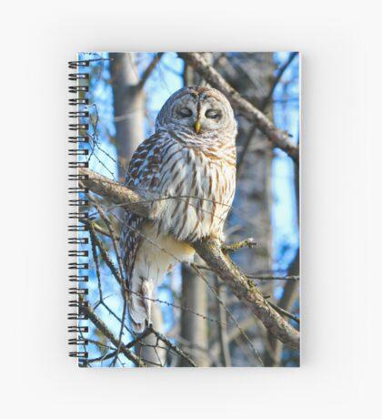 Day dreamer Spiral Notebook