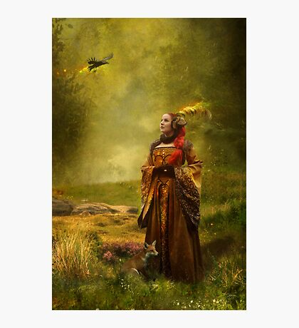 Lady Stark [winter is coming] Photographic Print