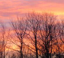 Autumn sunrise  Sticker