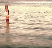 The lonley post - Homebush Bay, Sydney. by elspiko