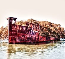 Shipwreck - Homebush Bay, Sydney. by elspiko