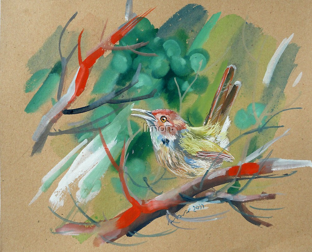 bird-o8 by limon