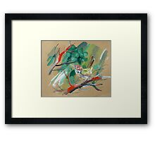 bird-o8 Framed Print