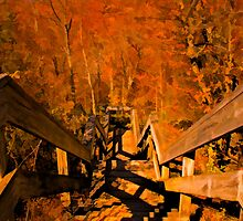 Old Wooden Staircase ~ Trees with Orange Leaves in a Mystical Forest ~ Fall Autumn Scenery by Chantal PhotoPix