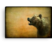 The call of the brown bear - textured Canvas Print