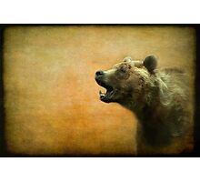 The call of the brown bear - textured Photographic Print