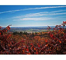 Fall Autumn Countryside viewed through a Red Leaf Bush under a Blue Sky Photographic Print