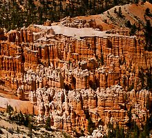 Bryce Canyon Hoodoos by Gregory J Summers