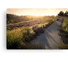 Old Mission Park Canvas Print
