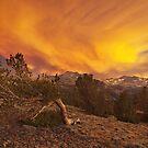 Coyote Sunset by Nolan Nitschke