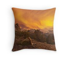 Coyote Sunset Throw Pillow