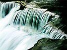 Falls on the Chagrin  by Marcia Rubin