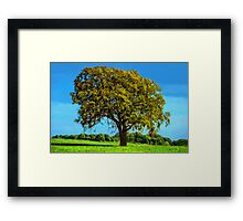 Stand up and be counted Framed Print