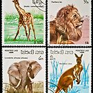 Collection of wild animals stamps. by FER737NG