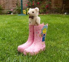 Ted in Boots! by Sharon Brown