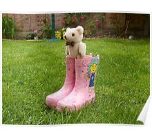 Ted in Boots! Poster