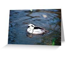Duck - Black and White - NYC - 4-11 Profile Greeting Card