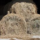 Hay, Hay, Hay by Monnie Ryan