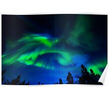 Northern Night Lights Dancing Poster