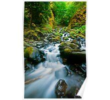 Starvation Creek Falls Poster