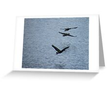 Duck Squadron Greeting Card
