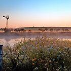 Williamson's Dam by Pene Stevens