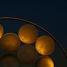 Golden Discs by Sea-Change