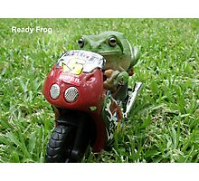 Ready Frog Photographic Print
