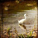 Egret by Lynn Starner