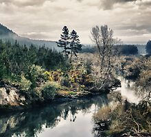 Atiamuri...A little slice of New Zealand... by Wenz