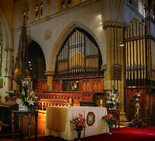 The Organ ~ St Saviour's Cathedral ~ Goulburn NSW by Rosalie Dale