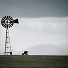 Rural Victoria - solitude by Mark Elshout