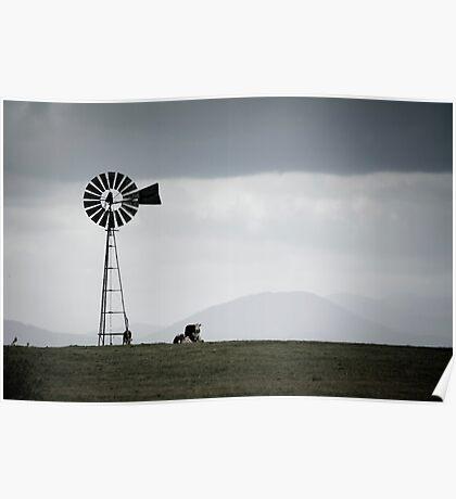 Rural Victoria - solitude Poster