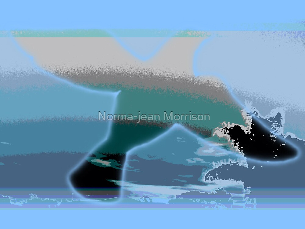 Whales by Norma-jean Morrison