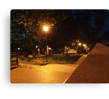 Bright street lights and staircase of granite Canvas Print
