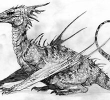 Dragon by Moonandsixpence