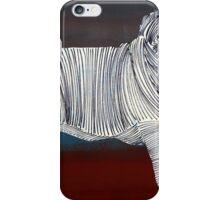 Lib 285 iPhone Case/Skin