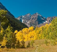Meadow View of the Maroon Bells by Greg Summers