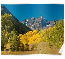 Meadow View of the Maroon Bells Poster