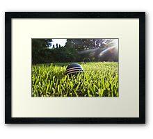 croquet ball Framed Print