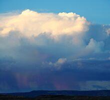 Pink Rain by Eileen McVey