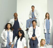 Grey's Anatomy Season 4 Sticker