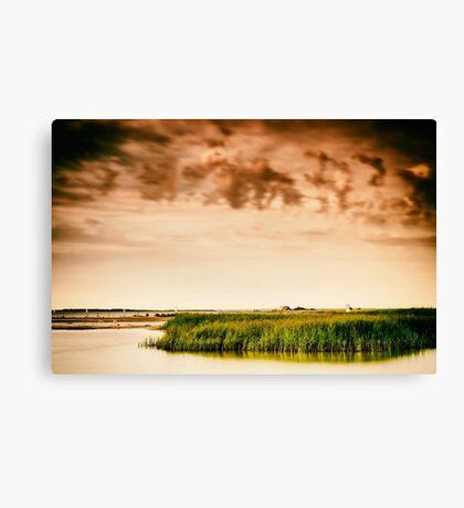 Baltic Sea beach on the island Poel Canvas Print