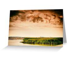Baltic Sea beach on the island Poel Greeting Card