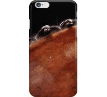 Dressage Braids iPhone Case/Skin