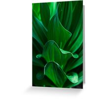 Layers of Green Greeting Card