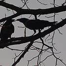 Two Crows in a tree. by Annabella