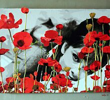Audrey in Poppies by Samitha Hess