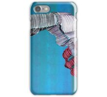 Lib 287 iPhone Case/Skin